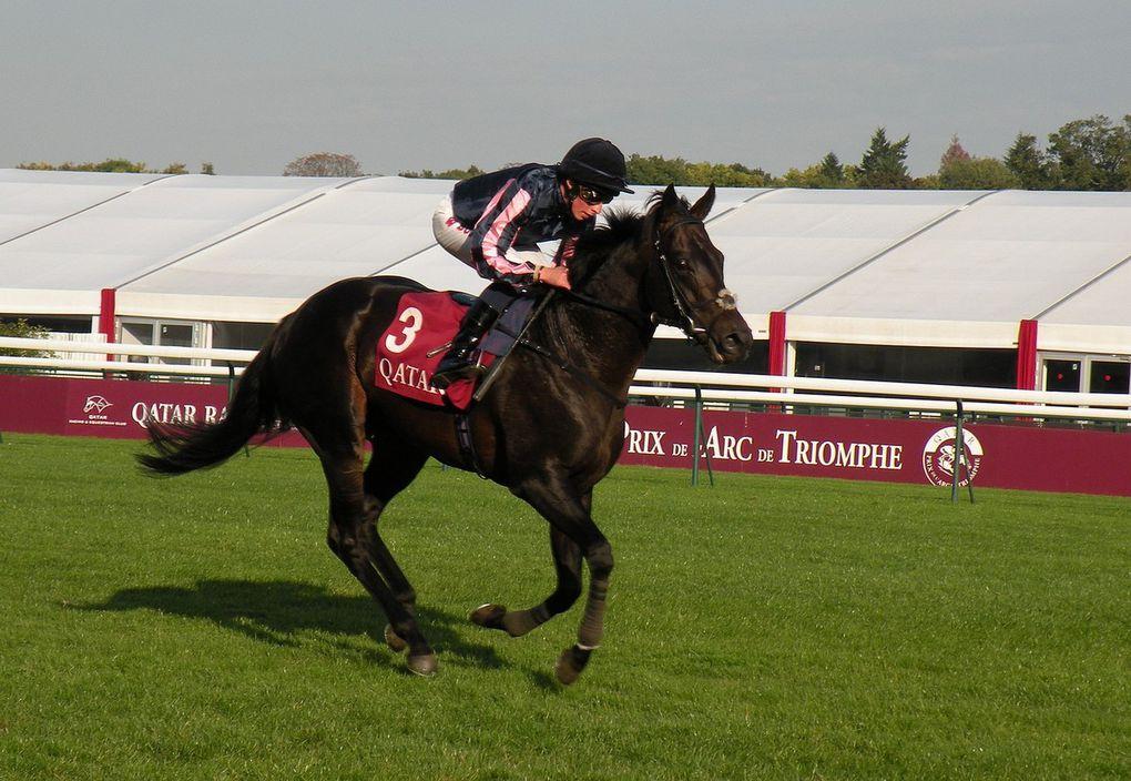 Longchamp (03.10.2015)