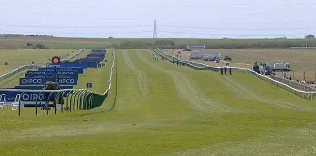 Rowley Mile - Air Force Blue - Galileo Gold