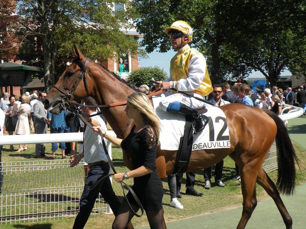 Prix de Lieurey