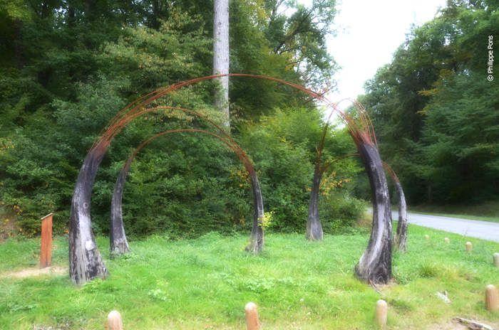 •Paco Le RAZER : Le labyrinthe intérieur