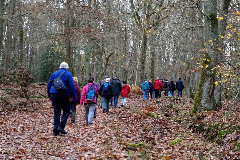 Couleurs d'automne pour nos March'Eure du 24 Nov.
