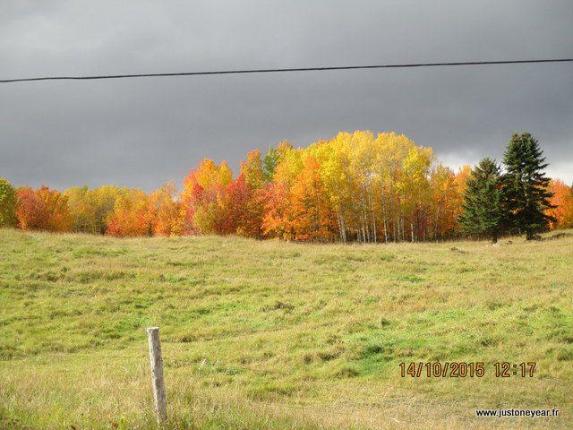 Région du Charlevoix Québèc, encore des couleurs
