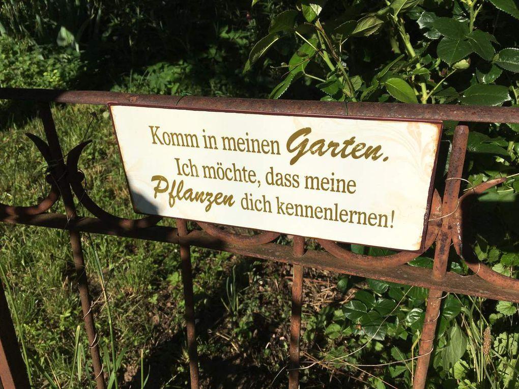 Brüder-Grimm-Lauf, 1. Station Oedheim