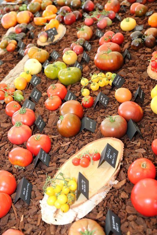 Fête de la tomate et des légumes anciens 2017 en images (2)