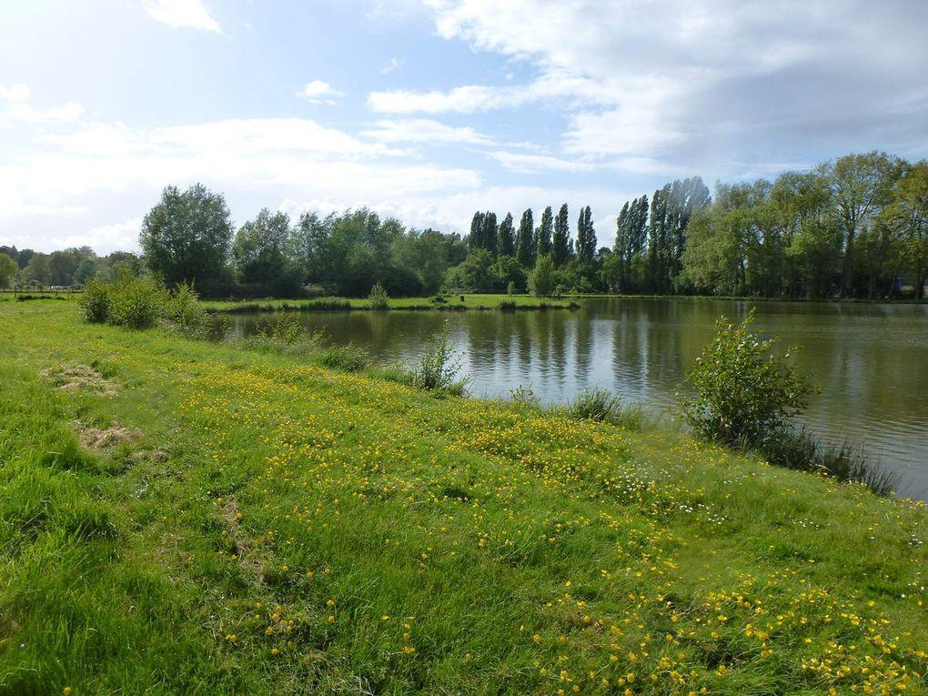 Bord du Loir au printemps