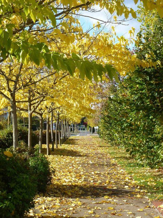 Le Lude sous le soleil d'automne