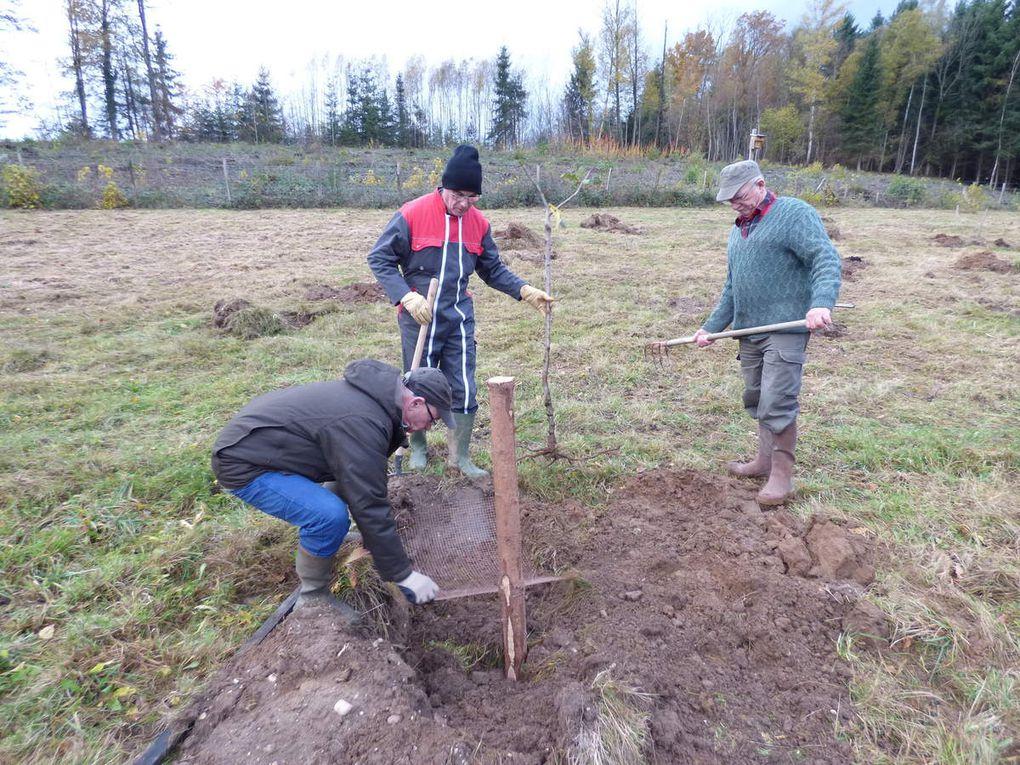 Les journées plantation des 18 et 19 novembre au verger en images