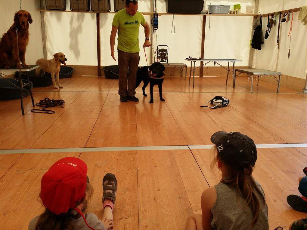 Visite du CESECAH à Lezoux. C'est un élevage de chiens ayant pour mission de faire naître des chiots les plus aptes possibles à leur futur métier de Chiens Guides d'aveugles.   Le sigle CESECAH signifiant Centre d'Etude, de Sélection et d'Elevage de Chiens guides pour Aveugles et autres Handicapés.