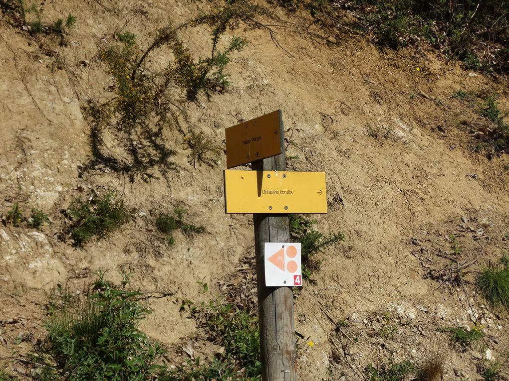 Nous partons vers la  gauche et suivons un sentier pierreux.