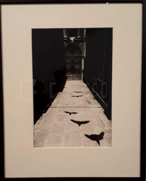 Mémoire et lumière, photographie japonaise à la MEP
