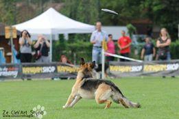 Frisbee USDDN European Championships 2015 Allemagne
