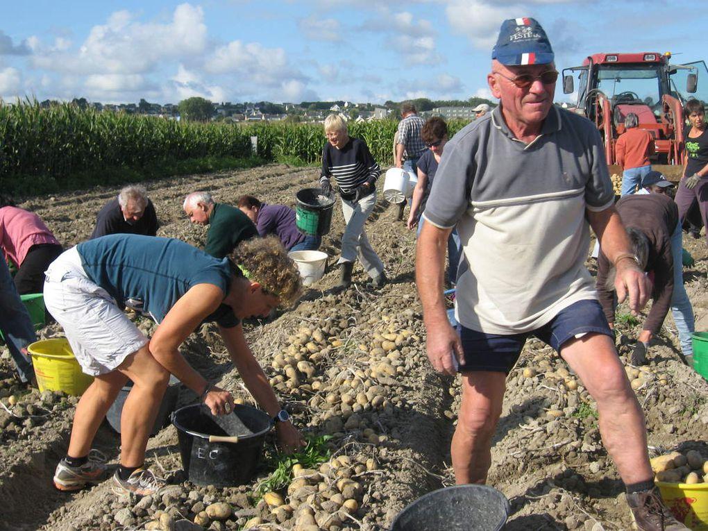 l'album 2015 du ramassage de pommes de terre