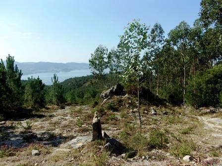 Sur le plateau, de Combarro à Armenteira.