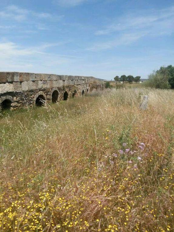 Etape 15 - Casas de Don Antonio - Valdesalor - 26 km - (355 kms)