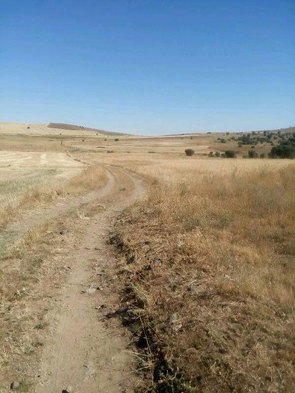 Les chemins s'enchaînent, de celui des céréales aux sentiers plus chaotiques. Au milieu, le reste d'un ermitage.