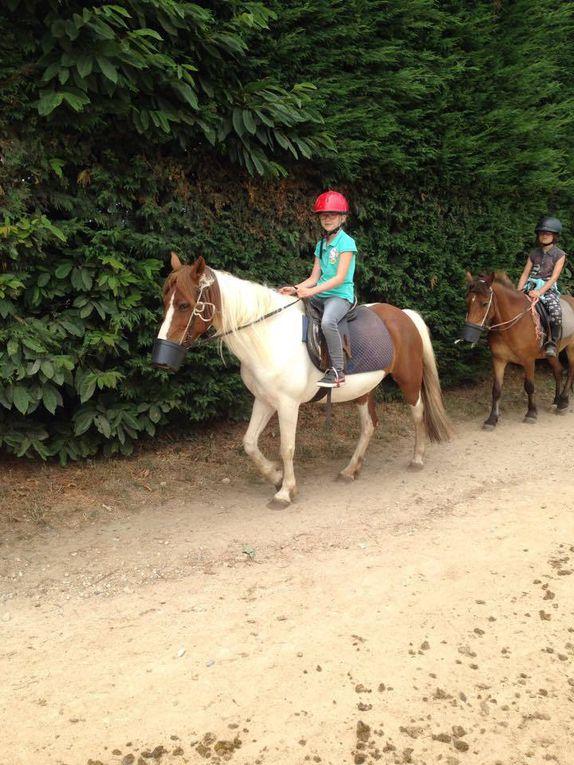 Photos du camp equitation à Guignen
