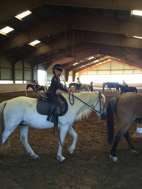 Photos du camp équitation