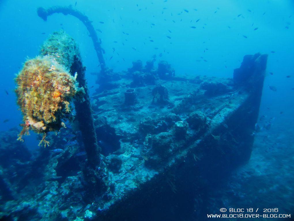 Wreck Diving : Le Liban, septembre 2016