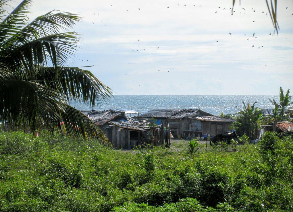 Paradis cachés du Pacifique colombien 3/9 juillet 2016