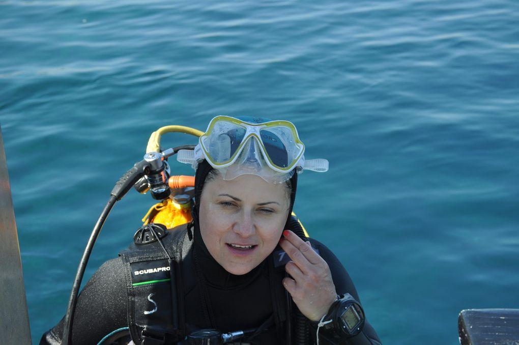 Des plongeurs et des plongeuses de choc !
