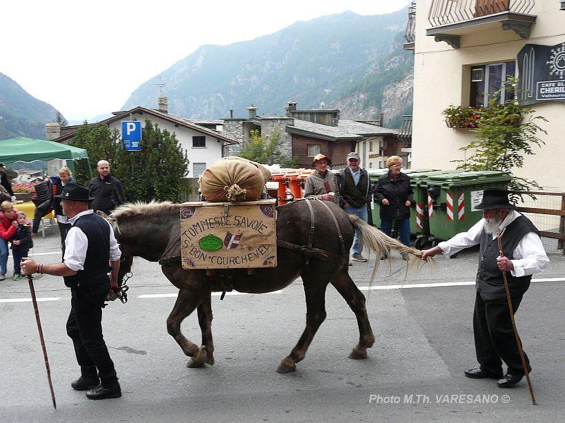 octobre 2015 - Desarpa (démontagnée) à Valtournenche au pied du Cervin