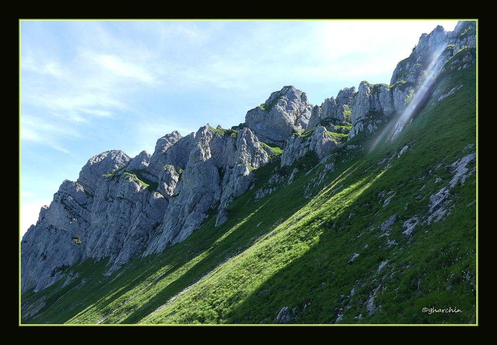 Les paysages au fur et à mesure de la montée,