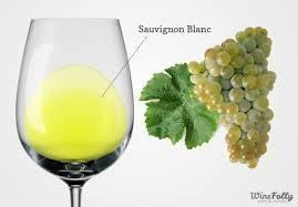 Sauvignon Blanc Producers South Australia Page 5