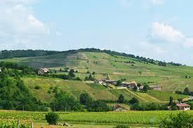Saint Amour Producers Beaujolais Region France page 2