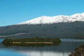Sauvignon       Blanc Producers Nelson Region  New Zealand