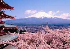 Sake Producers Japan