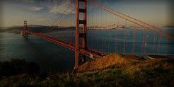 Montepulciano Producers San Francisco Bay California