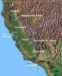 Lagrein Producers Central Valley California