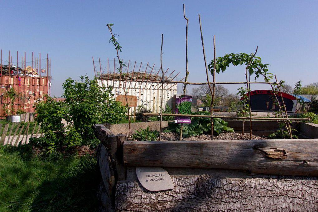 Retour sur la permanence d'avril : plantations, tressage de noisetier, entretien de la zone en partage ! Merci aux donateurs pour les différents petits fruitiers !