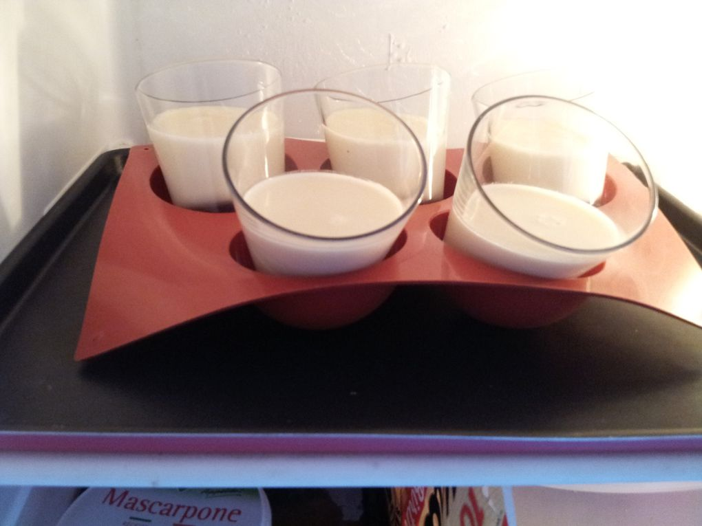 Panacotta à la vanille et son coulis de prunes rouges