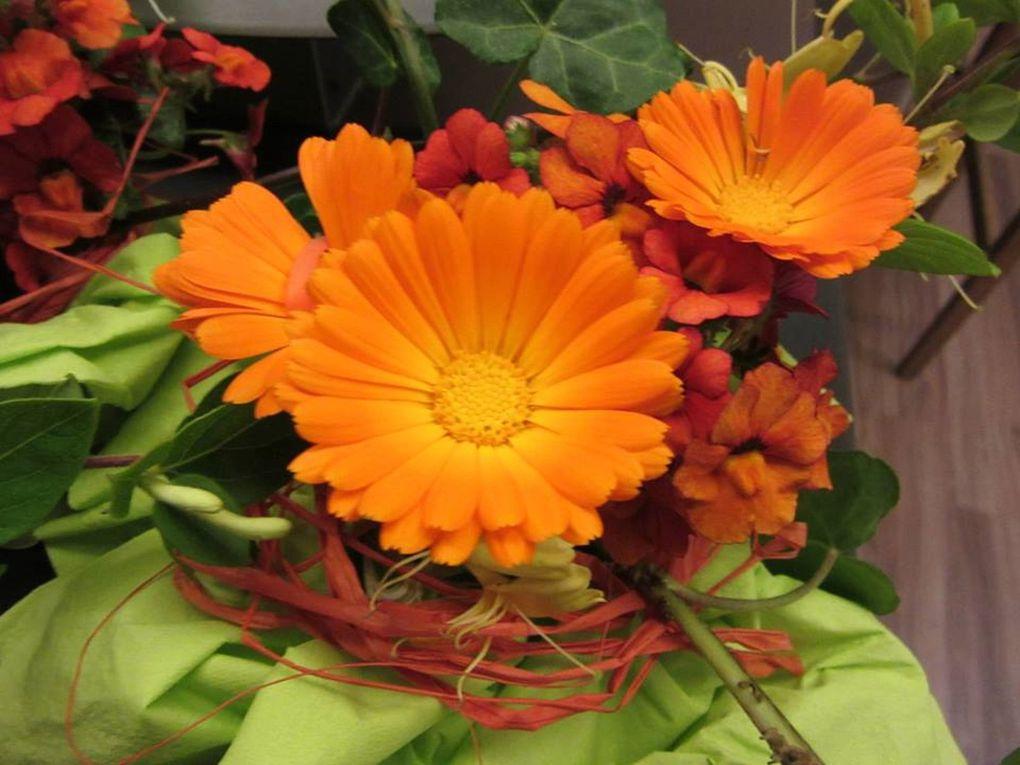 Orange, la couleur de la bonne humeur et du dynamisme...