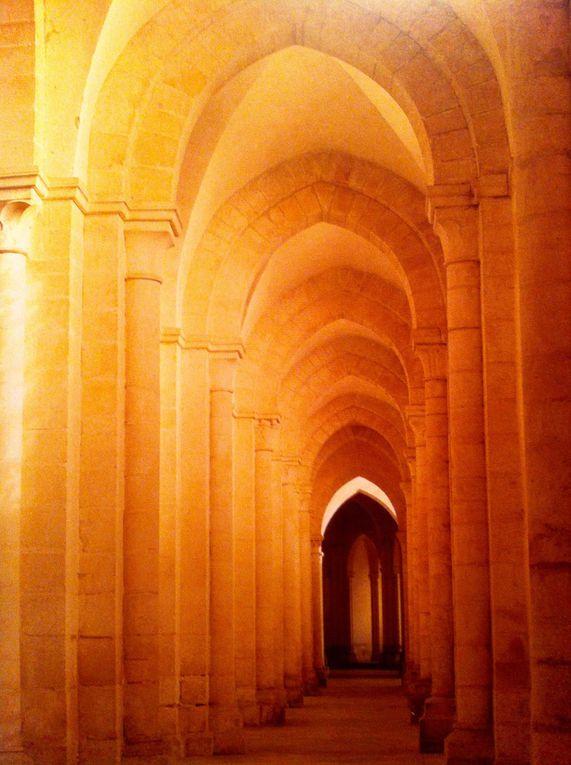 La Cathédrale de Reims, Abbatiale de Pontigny dans l'Yonne, Saint David's Cathédral la tour vue d'en bas ou le bois rendu invisible aux yeux du profane.