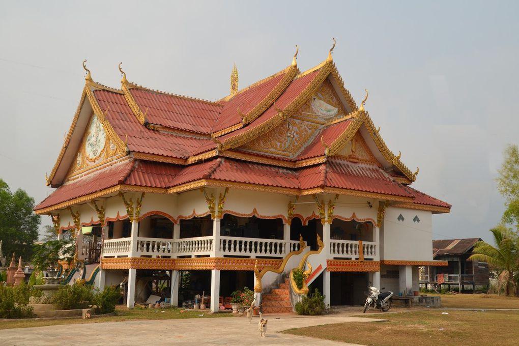 Nombreux temples, bouddhas, stupas (même en pleine forêt) à Champasak et alentours