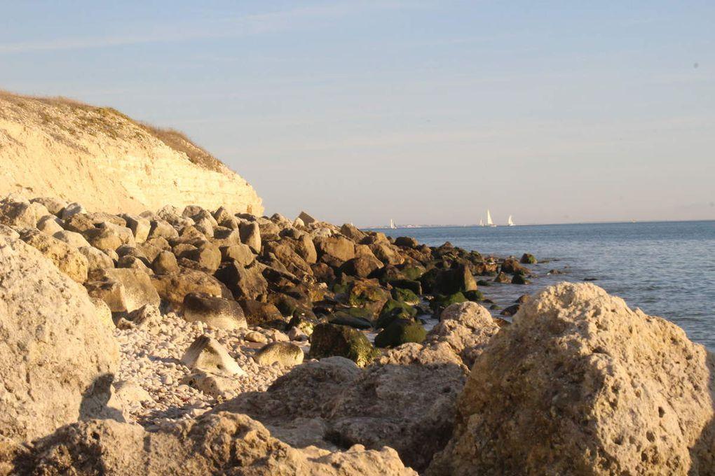 • La Rochelle •