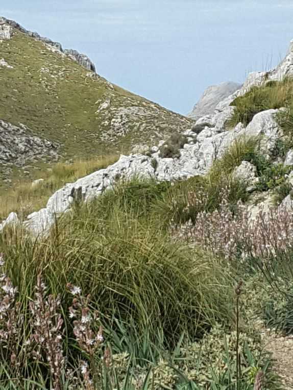 5 mai - Santuari de Lluc  - Sóller