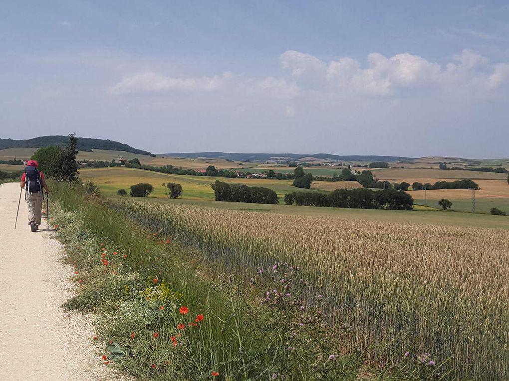 22 juin  -  Grañon  -  Espinosa de Camino    25 kms