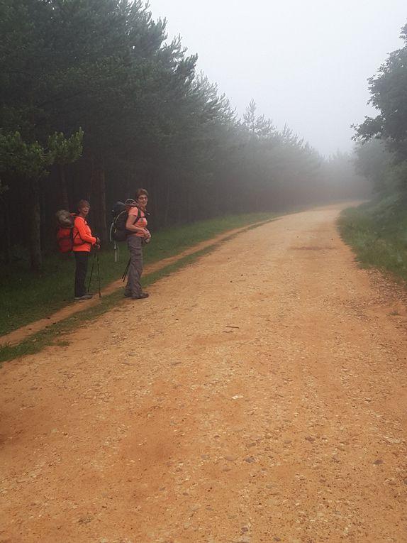 23 juin  -  Espinosa de Camino - Atapuerca     23 kms