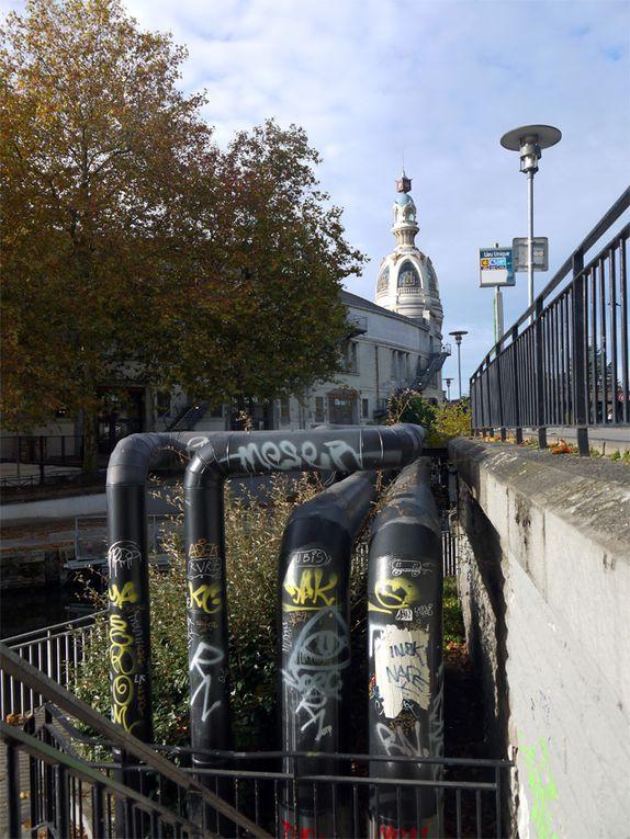 Bords de Loire, Nantes, 30 octobre 2015 (tous droits réservés S.Scardigli)