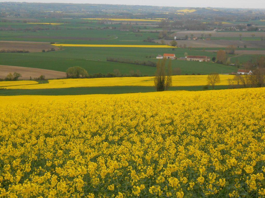Diaporama. Du côté de Charroux, classé plus beau village de France. La plaine de la Limagne est bien belle, plaine de la Limagne qui tente, avec les Volcans d'Auvergne, pour la dernière fois, être classée au patrimoine mondial de l'Unesco. On le saura cet été.