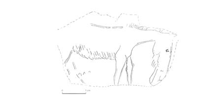 Plan de la grotte. Gravure sur pierre, cheval ( visible au Musée de Vesoul). Gravure sur pierre, ours. Silex taillés.