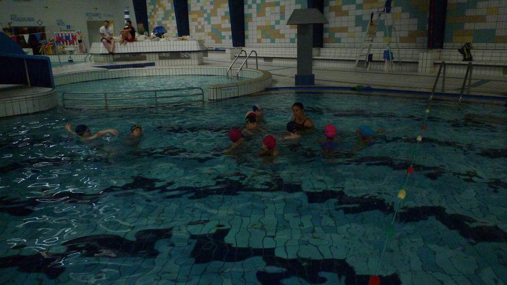 Tous les élèves de la grande section au cm1 vont à la piscine les mardis matins pour 8 séances de natation. Les grandes sections apprivoisent l'eau avec Anne-Marie, le groupe de CP apprend à nager avec Gwen (maître-nageur),les CE1 ET CE2  s'entraînent avec Sandrine et les CM1 se perfectionnent avec Nolwenn.