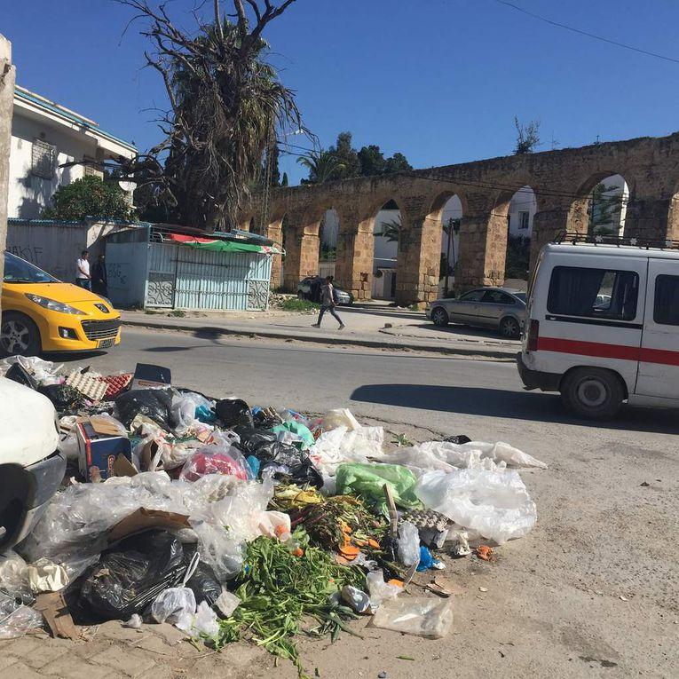 L'appel citoyen du 15 Avril 2016: Tunisiens, levez vous pour votre pays. Autorités tunisiennes, appliquez la loi.