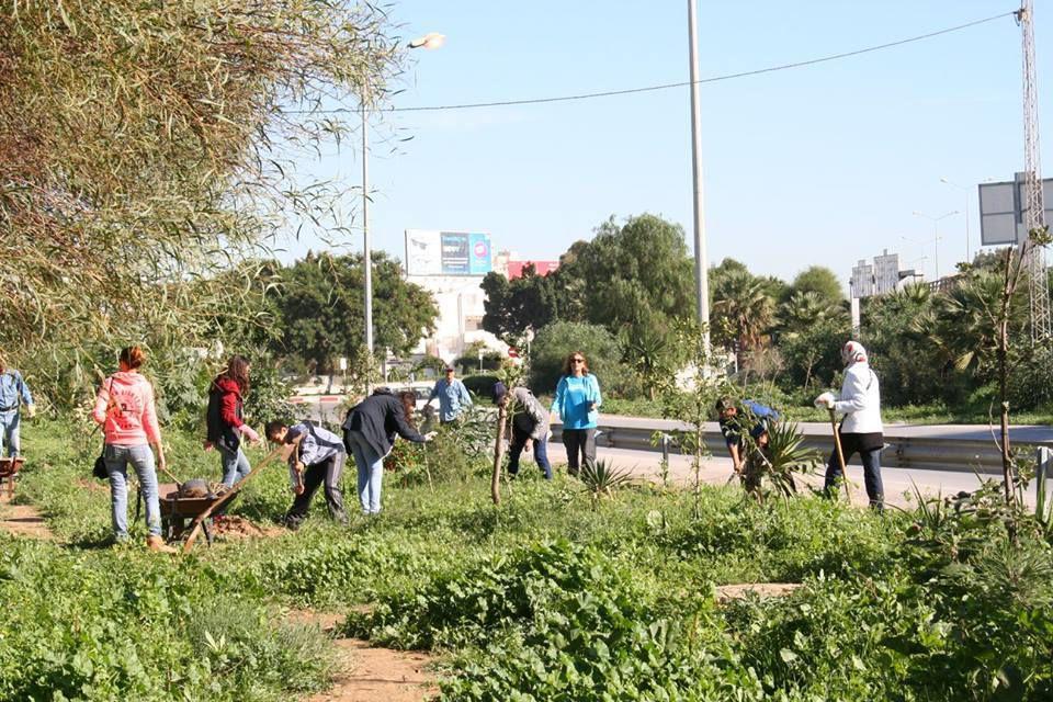 L'action du 27 Novembre 2016 au jardin des Mimosas Manar 3