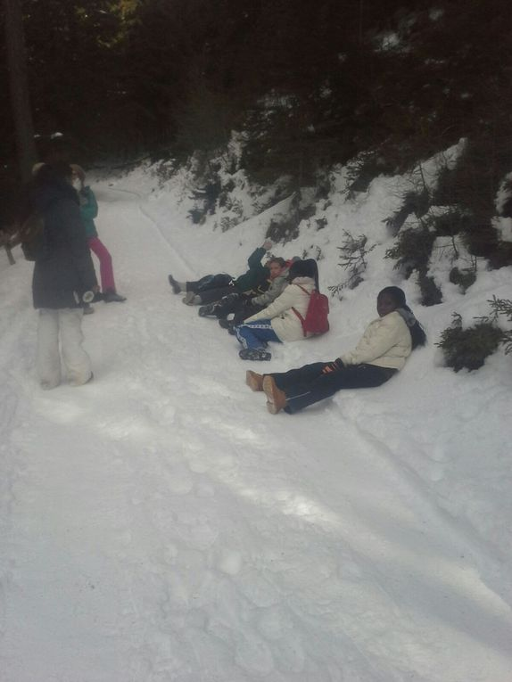 A group of special need students spent a weekend in the mountains. They did hiking, skiing and ice skatig