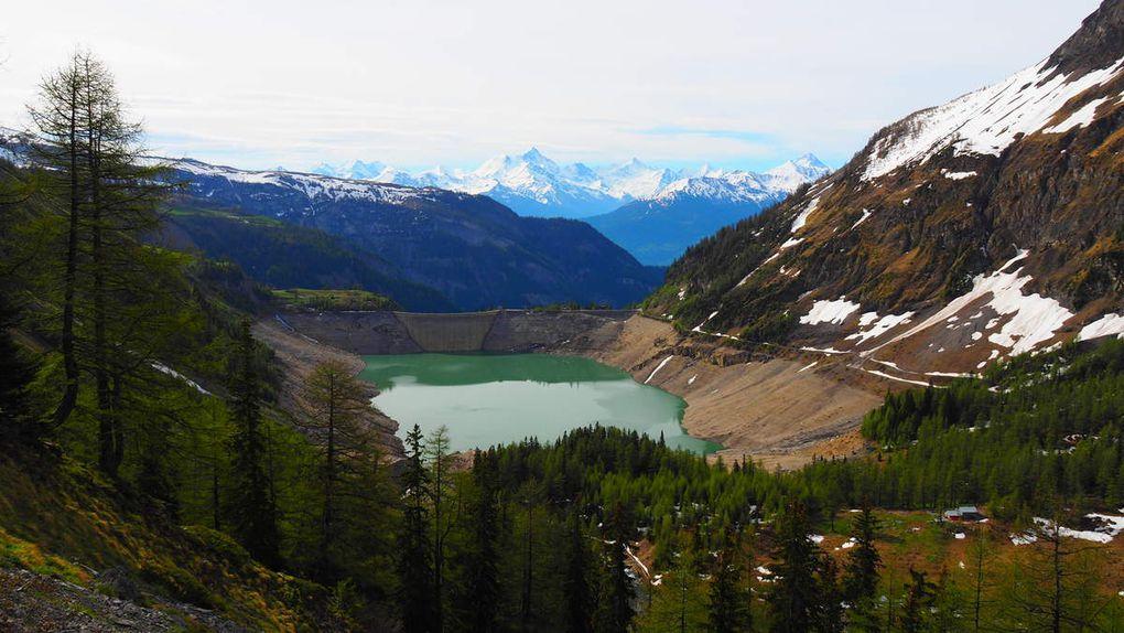 Lac de Tseuzier, alpage de Rawil