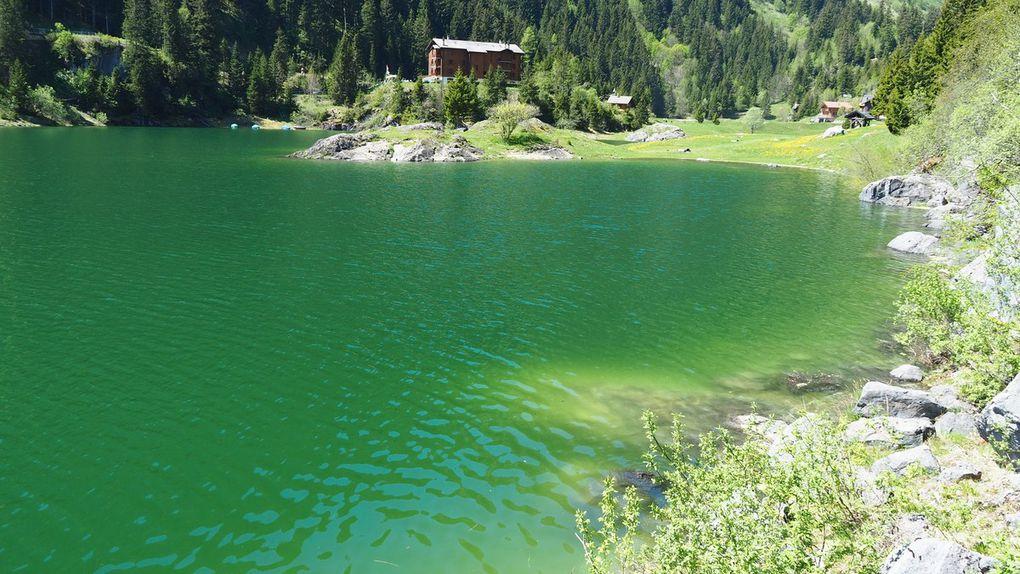 Le lac de Taney